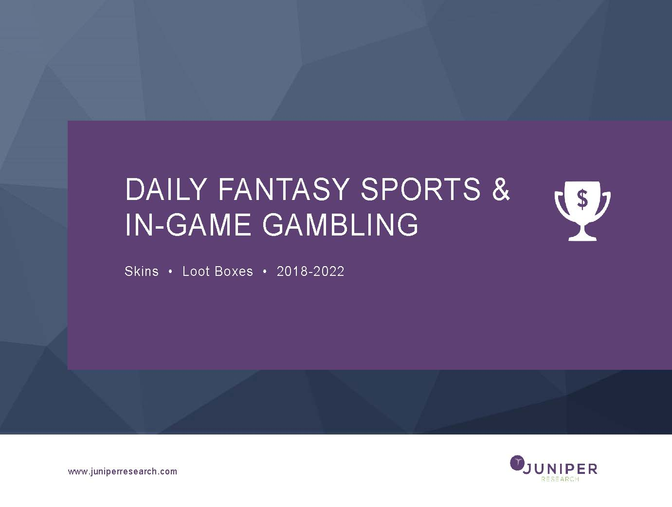 Daily Fantasy Sports & In-Game Gambling