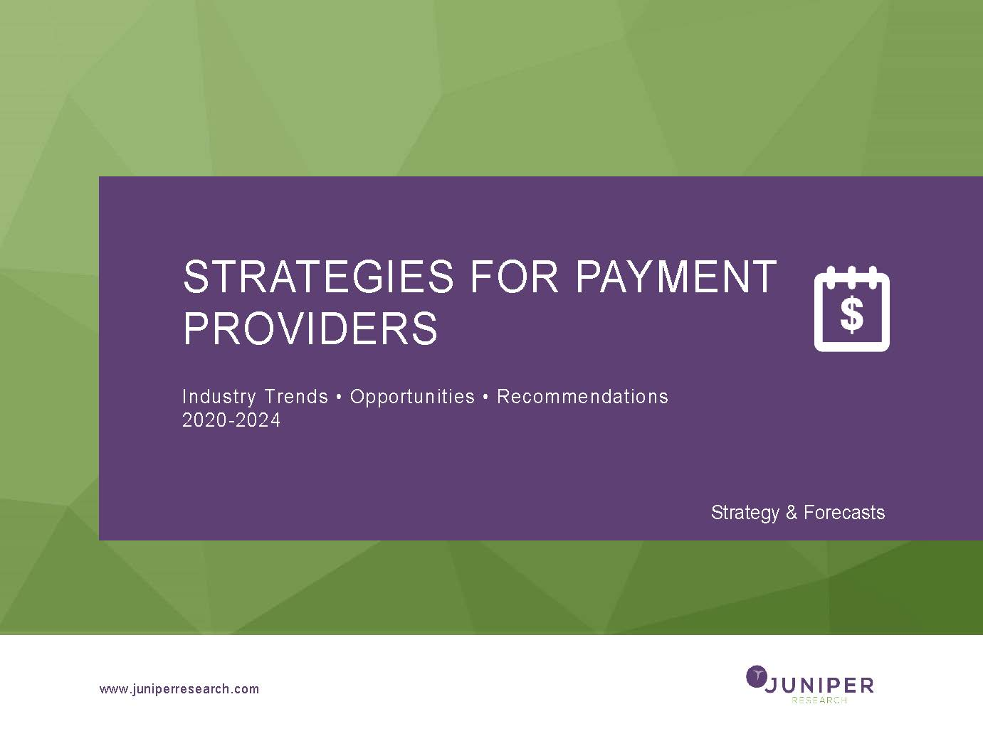 Strategies for Payment Providers
