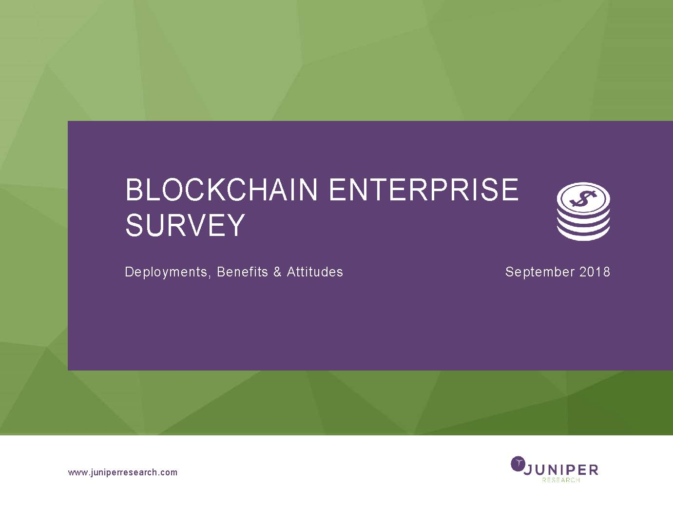 Blockchain Enterprise Survey