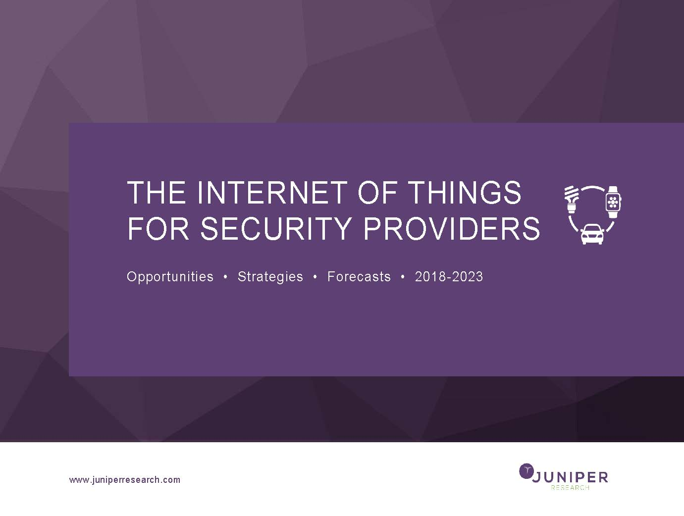 The Internet of Things for Security Providers