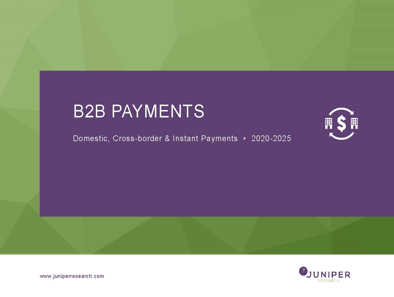 B2B Payments: Domestic, Cross-border & Instant Payments 2020-2025