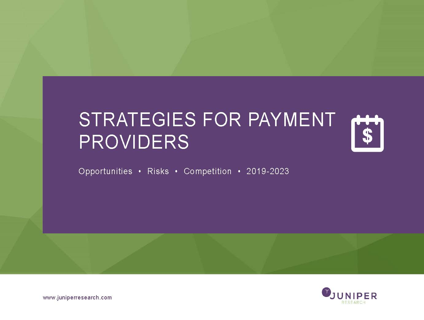Strategies for Payment Providers: Opportunities, Risks & Competition 2019-2023