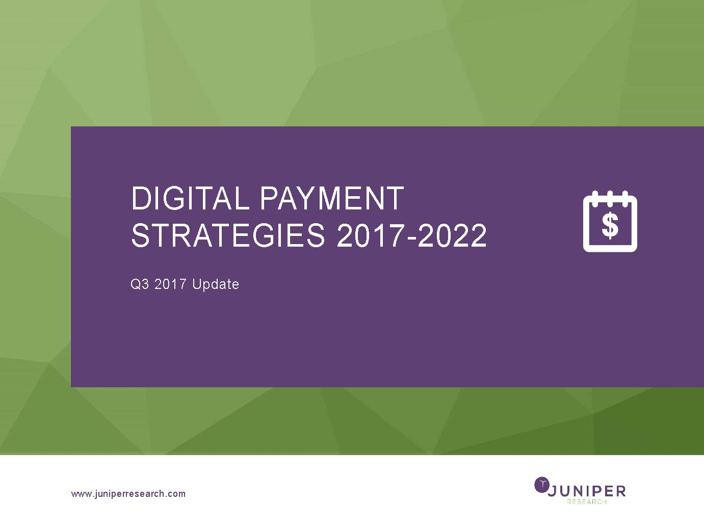 Digital Payment Strategies - Q3 2017