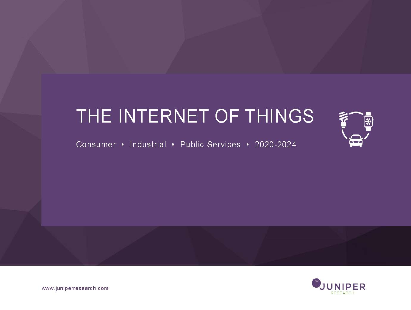 The Internet of Things: Consumer, Industrial & Public Services 2020-2024