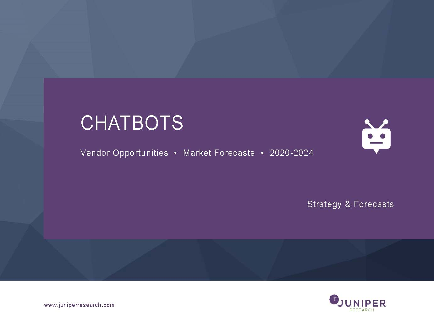 Chatbots: Vendor Opportunities & Market Forecasts 2020-2024