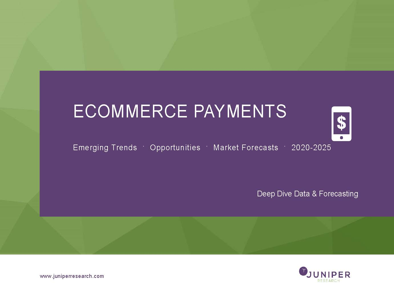 eCommerce Payments: Deep Dive Data & Forecasting 2020-2025