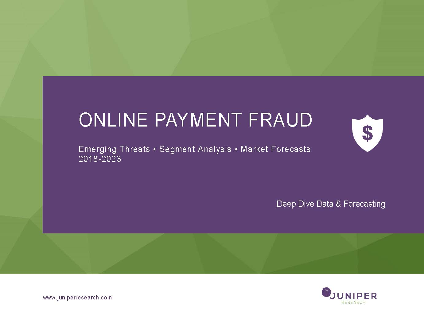 Online Payment Fraud: Deep Dive Data & Forecasting 2018-2023