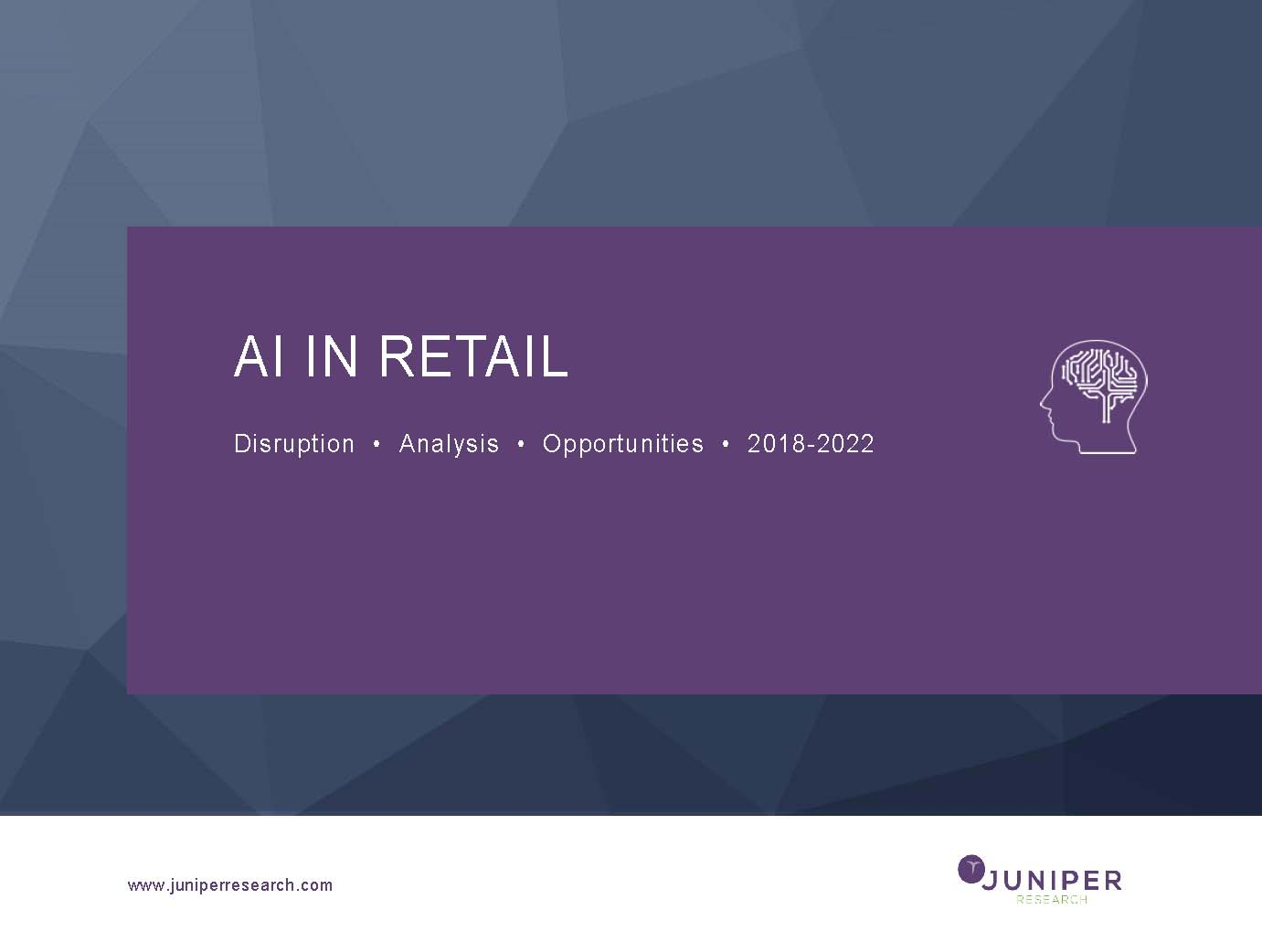AI in Retail: Disruption, Analysis & Opportunities 2018-2022 Full Research Suite